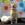 Chilli - Golden Labrador